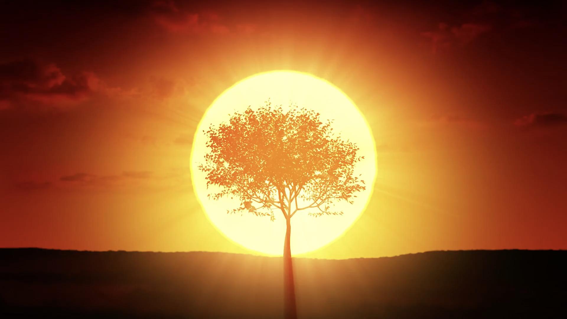 sun-slider-still